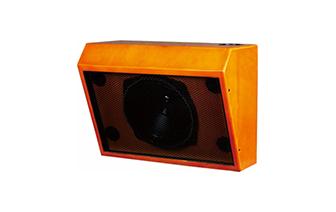 CS20专业扬声器